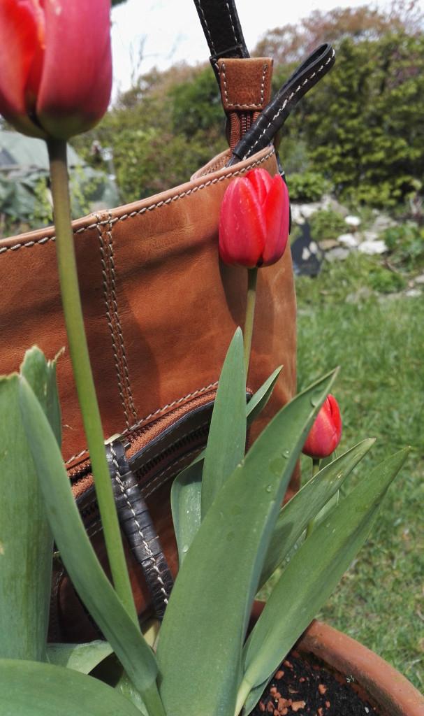 Tulpen und Tasche - warum nicht gleich beides?